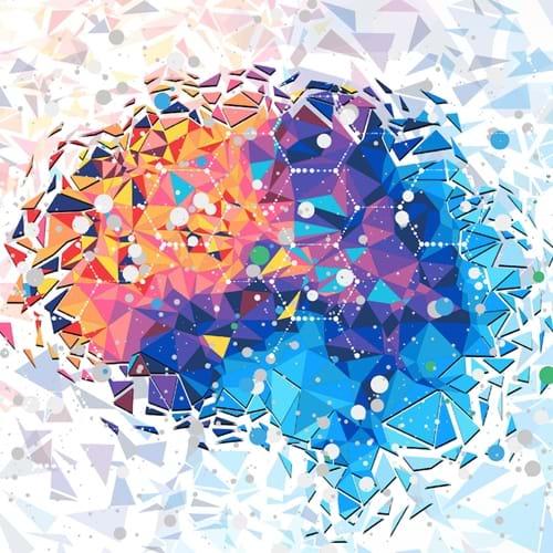 Hjernens foranderlighed